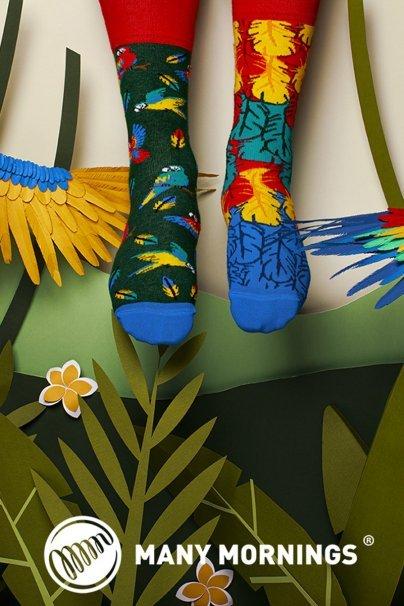 ponozky Farebné ponožky Paradise Parrot - Many Mornings